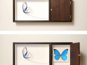 Curiositas – Papillons